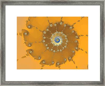 Classic Nautilus Framed Print by Mark Greenberg