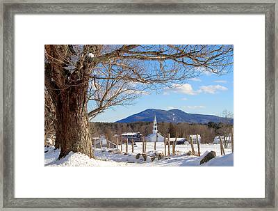 Classis Tamworth Trees Winter Framed Print