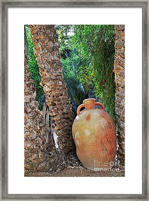 Clay Jar By Palm Tree Framed Print by Sami Sarkis