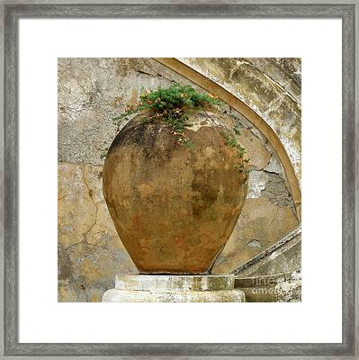 Framed Print featuring the photograph Clay Pot by Lainie Wrightson