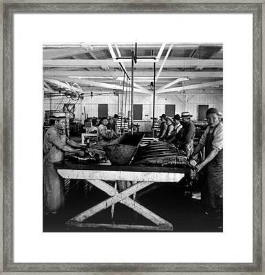 Cleaning Salmon In Astoria, Oregon, C Framed Print by Everett