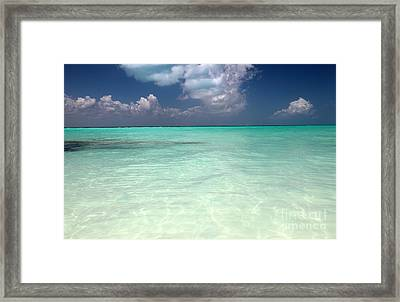 Clear Framed Print