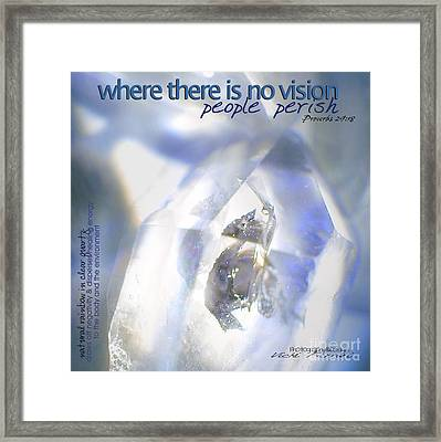 Framed Print featuring the photograph Clear White Vision by Vicki Ferrari