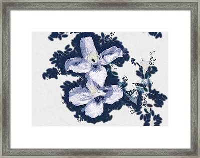 Clematis In Blue Framed Print