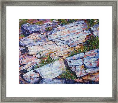 Cliff At Montlake Framed Print