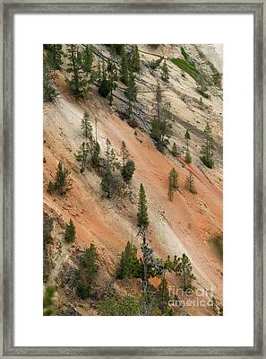 Framed Print featuring the photograph Cliff Side Grand Canyon Colors Vertical by Living Color Photography Lorraine Lynch