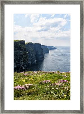 Cliffs Of Moher In Spring Framed Print by Cheryl Davis