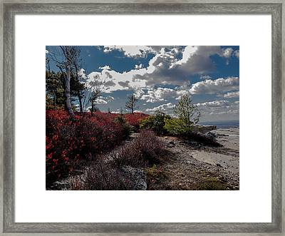 Clifftop Splendor Framed Print