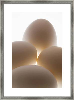 Close Up Of A Group Of Eggs Calgary Framed Print by Michael Interisano