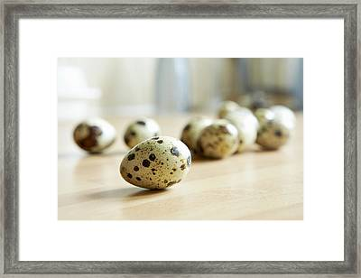 Close Up Of Quail Eggs On Counter Framed Print by Debby Lewis-Harrison