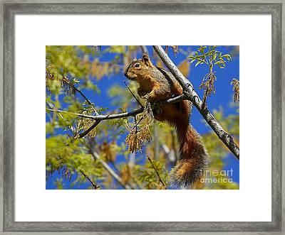 Standing Watch Framed Print