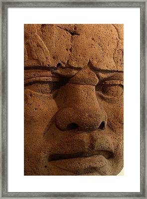 Close View Of A Colossal Stone Head Framed Print by Kenneth Garrett