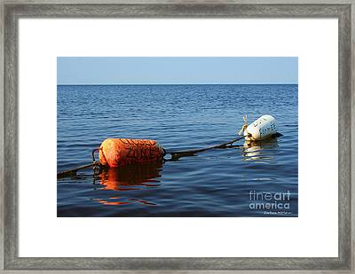 Framed Print featuring the photograph Closed by Barbara McMahon