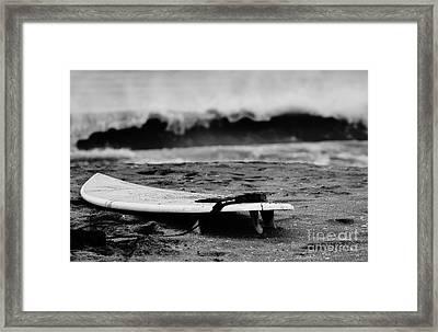 Closeout Framed Print by Lynda Dawson-Youngclaus