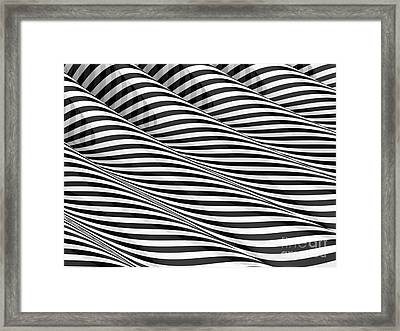Closer Framed Print by Steve Young