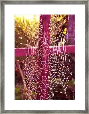 Framed Print featuring the photograph Closer To Him Cross Weaving by Cindy Wright