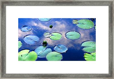 Closing Lilies Framed Print by Catherine Natalia  Roche