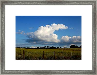 Cloud Framed Print by Beverly Hammond