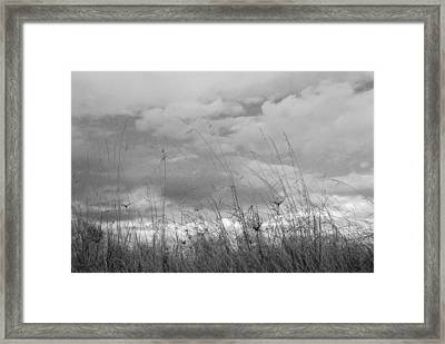 Framed Print featuring the photograph Cloud Watching by Kathleen Grace