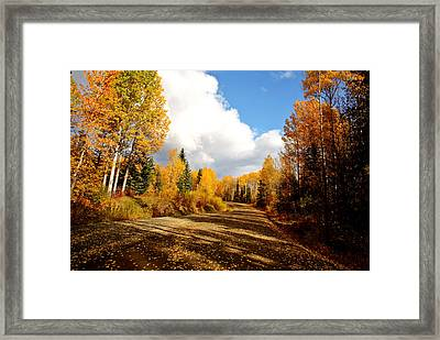 clouds and autumn leaves along British Columbia backroad Framed Print