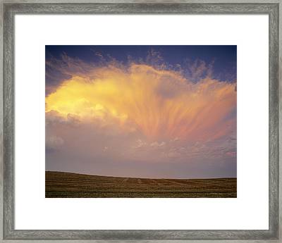 Clouds Over Canola Harvest, Saint Framed Print by Yves Marcoux