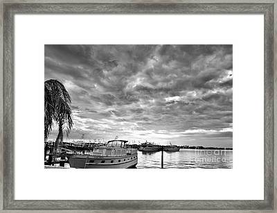 Clouds Over The Lily May B-w Framed Print by Lynda Dawson-Youngclaus