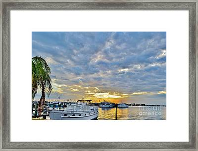 Clouds Over The Lily May Framed Print by Lynda Dawson-Youngclaus