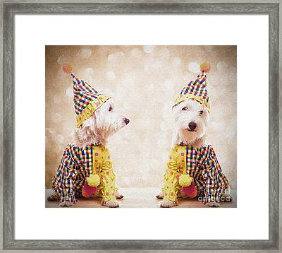 Clowning Around Framed Print by Edward Fielding