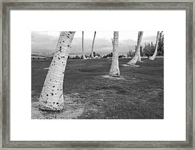 Club Foot Framed Print