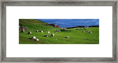 Co Cork, Beara Peninsula Framed Print by The Irish Image Collection