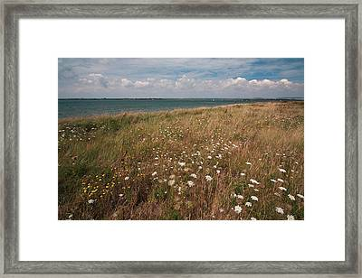 Coastal Flowers Framed Print by Shirley Mitchell