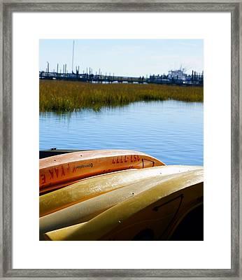Coastal Life Framed Print