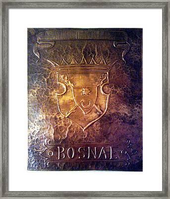 Coat Of Arms Bosnia  Framed Print by Mak Art