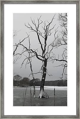 Coate2 Framed Print