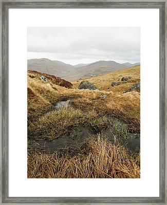 Cobbler Framed Print