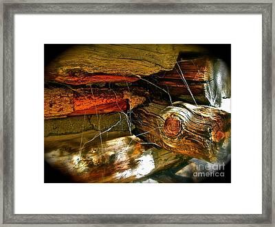 Cobwebs Framed Print by Tina Slee