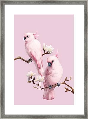 Cockatoos And Magnolia Framed Print