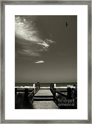 Coconut Point Beach Fl Framed Print by Susanne Van Hulst