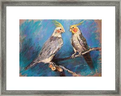 Coctaiel Parrots Framed Print by Ylli Haruni