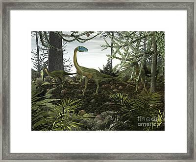 Coelophysis Dinosaurs Walk Amongst Framed Print by Walter Myers