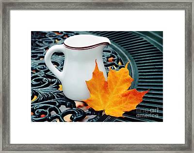 Coffee Cream Framed Print by Elaine Manley