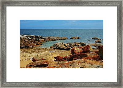 Coffin Bay Np 02 Framed Print by David Barringhaus