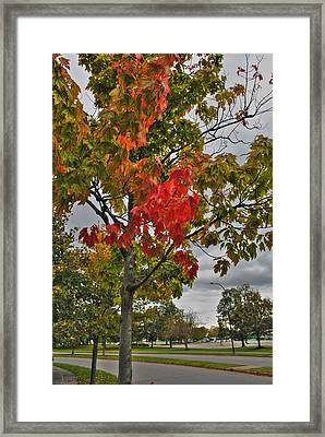 Framed Print featuring the photograph Cold Autumn Breeze  by Michael Frank Jr