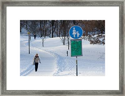 Cold Beer Framed Print by Andrew  Michael