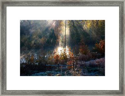 Cold Mist Iv Framed Print by Michael Tipton