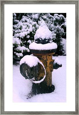 Cold Territory Framed Print by Kevin D Davis