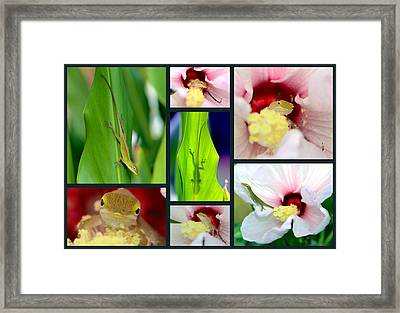 Framed Print featuring the photograph Collage 001 by George Bostian