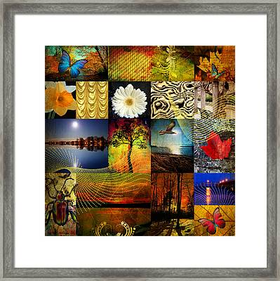 Collage Of Colors Framed Print