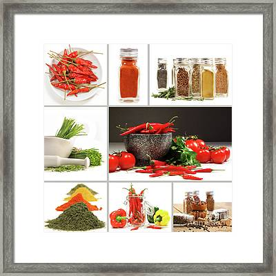 Collage Of Different Colorful Spices For Seasoning Framed Print by Sandra Cunningham