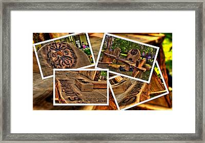 Collage1 Framed Print by Photo Chasers